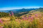 Une location de vacances en Auvergne pour se ressourcer