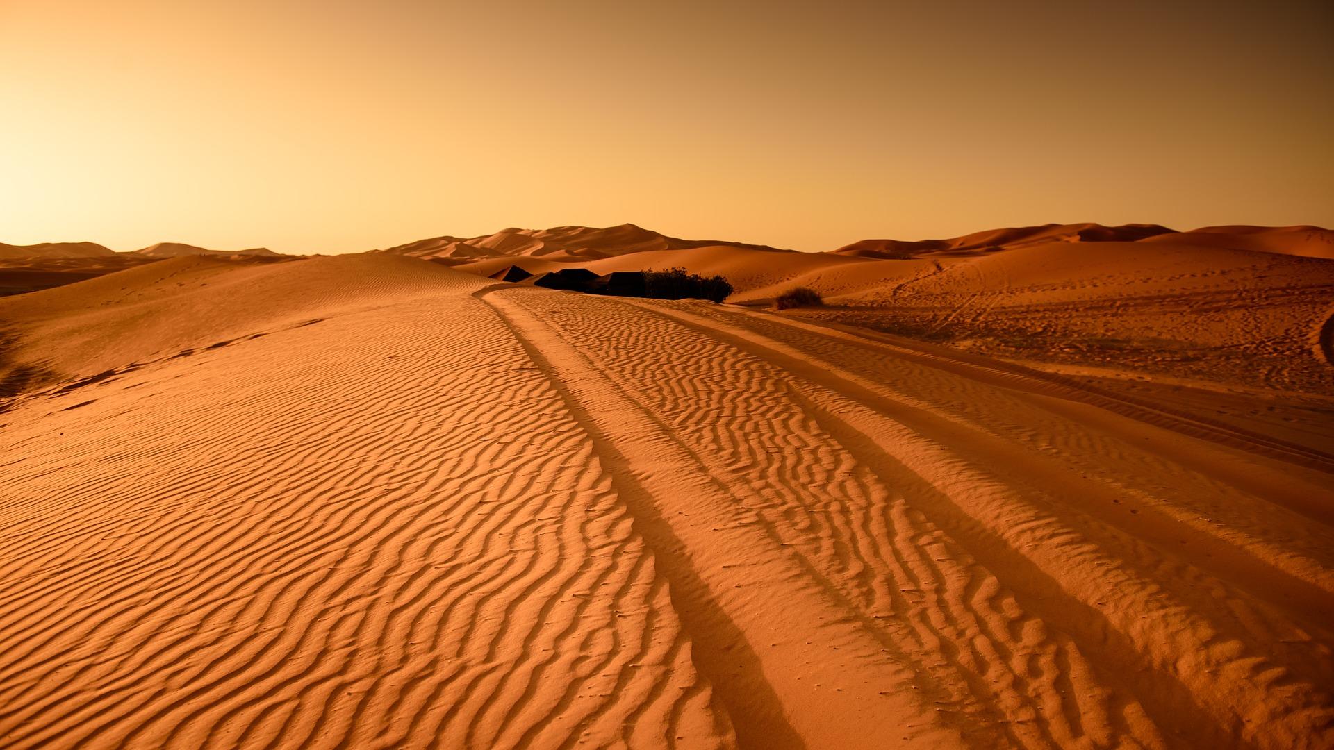 Le Maroc est une destination d'exception pour tous ceux qui rêvent d'un dépaysement total, d'envoûtement et d'un voyage en plein milieu de l'exotisme. Ce beau pays du Maghreb regorge de plusieurs sites culturels et naturels qui suscitent un véritable enchantement auprès des locaux et des touristes. Mais ici, nous allons faire la rencontre de merveilles naturelles du Maroc. De Merzouga aux dunes du Sahara Le Sahara ne peut pas passer inaperçu quand on voyage au Maroc. Merzouga est une porte d'entrée de prédilection pour partir à l'aventure dans les dunes marocaines. Ce village saharien au sud-est du pays, appelé aussi Erg Chebbi est une destination de rêve caractérisé par son paysage naturel et son originalité sans pareil. Là-bas, vous disposez de plusieurs activités que vous pourrez faire en famille comme les balades à dos de dromadaire, les balades sportives à pieds ou encore une nuit à la belle étoile avec les nomades sahraouis. L'Oasis de Fint Après le désert du Sahara, place à l'Oasis de Fint. C'est un véritable paradis au milieu du désert. Cette enclave en plein sud de Ouarzazate est une figure naturelle des contrastes que peut offrir le Maroc. D'un côté, vous avez la nature luxuriante de la palmeraie, et de l'autre les falaises rougissantes du désert. L'oasis de Fint témoigne également l'ingéniosité des Marocains concernant le système d'irrigation qui va assurer l'épanouissement de cette végétation exceptionnelle. Les gorges de Toudgha Le massif montagneux du sud de l'Atlas attend tous les visiteurs curieux qui ont envie de découvrir les merveilles du Maroc. Les gorges de Toudgha sont une destination à ne pas manquer une fois au Maroc, surtout si vous adorez les explorations pédestres. Entre les falaises de calcaire, du haut de ses trois cent mètres, et le chemin en fente pour parvenir à l'eau de l'oued Toudgha, c'est une véritable aventure à ne pas rater.